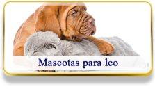 Mascotas para Leo