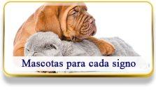Mascotas para cada signo