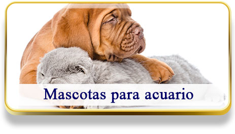 Mascotas para Acuario