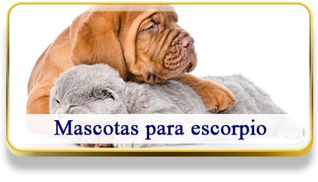 Mascotas para Escorpio