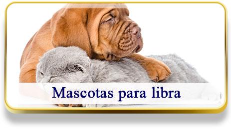 Mascotas para Libra