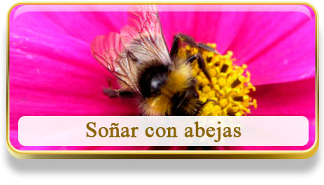 Soñar con abejas