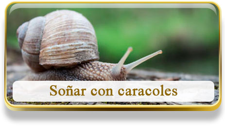 Soñar con caracoles