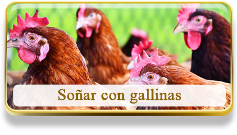 Soñar con gallinas