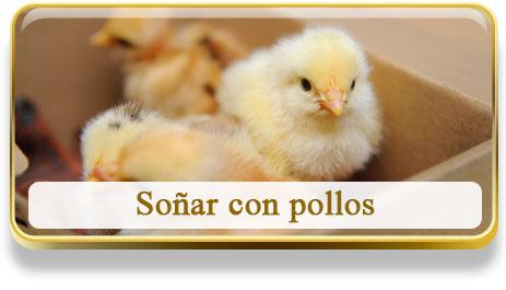 Soñar con pollos