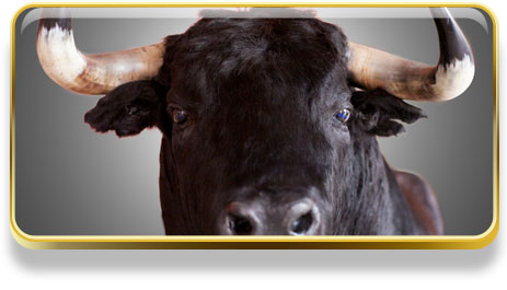 ¿Qué significa soñar con toros?